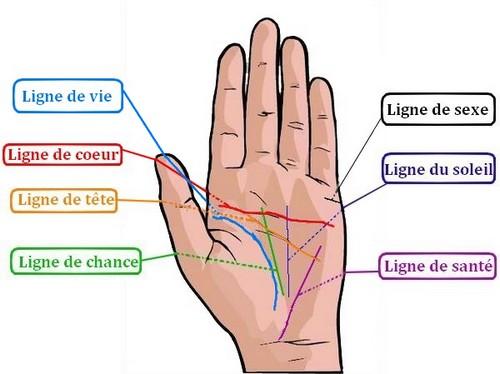 ligne de main Chiromancie