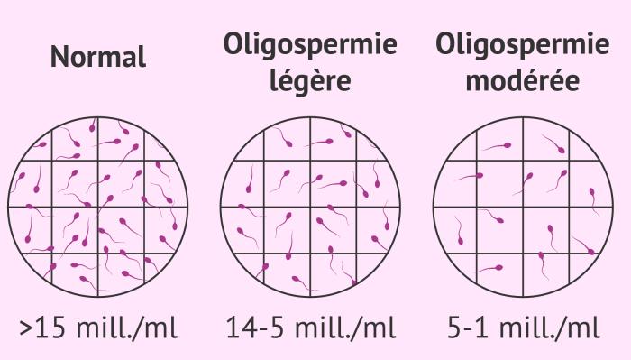Recette naturelle pour améliorer la qualité du sperme et la quantité des spermatozoïdes