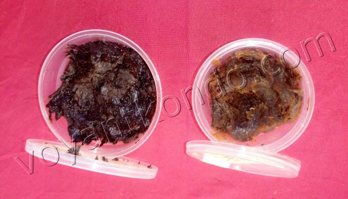 Les recettes de purification + CHANCE pour la nouvelle année 2020